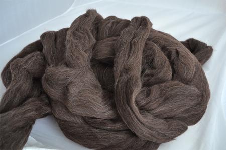 Shetland czarny (1)