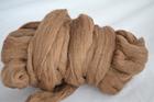 Shetland Moorit  (1)