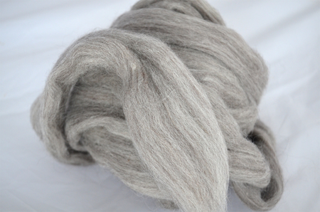 Shetland szary (1)
