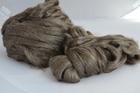 Jedwab Peduncle (dziki) (2)